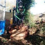 Cornwall Tree Surgeons