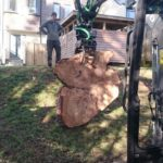 Tree Surgeons Cornwall