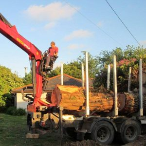 Tree Surgeon Crane Bude