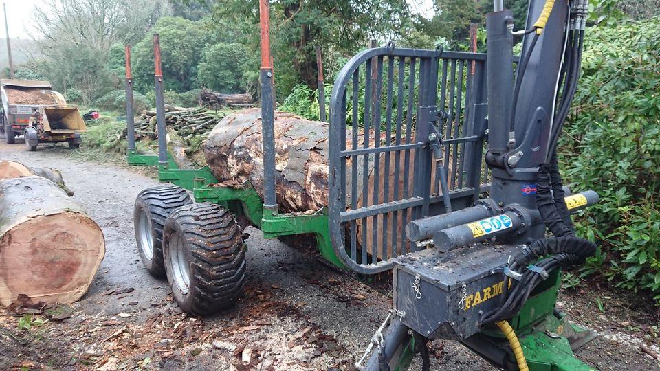 Tree Surgeon in Mitchell