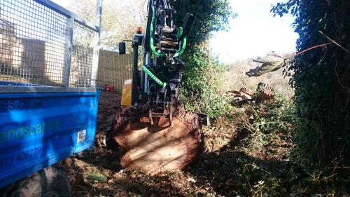 Tree Surgeons South East UK